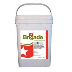 Brigade Sand