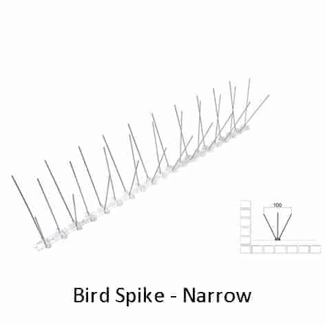 Narrow Bird Spike by Agserv